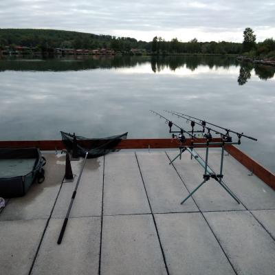 Pêche Carpe
